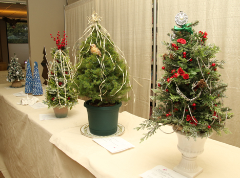 Christmas season opens with Festival of Trees