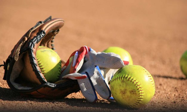 Co-ed softball league in the works