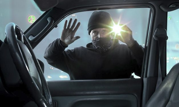 Auto thieves on the job in Litchfield
