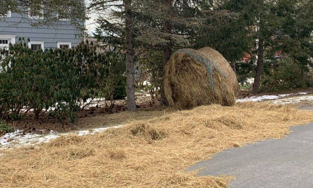 The great hay escape: roll spills on road