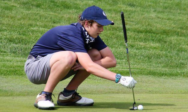 Litchfield golfers extend win streak to six