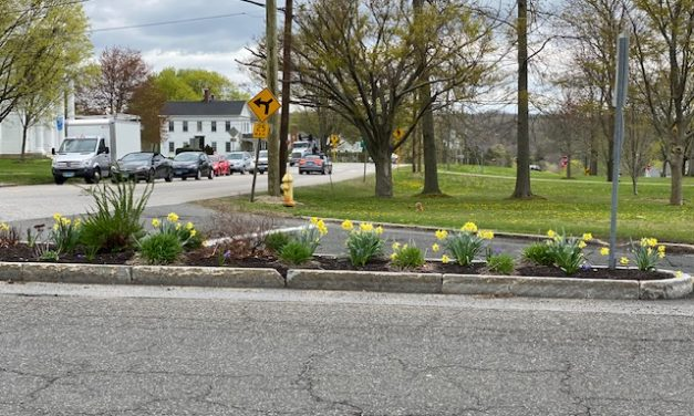 Plantings honor the late Jeanne FitzGerald