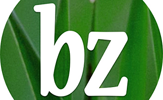 BZ going to subscription starting July 1