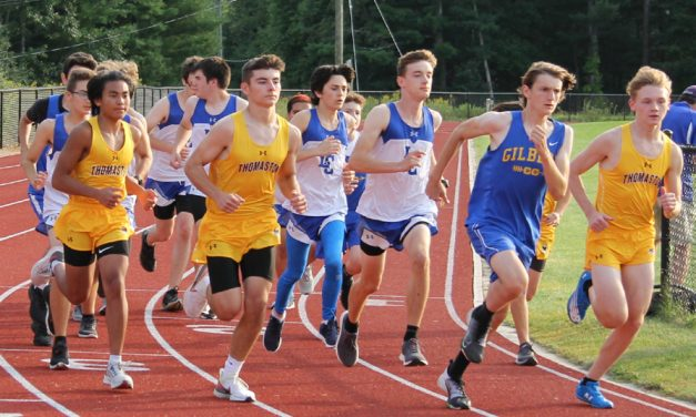 Litchfield teams show promise in first meets